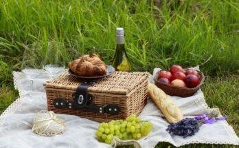 Что взять летом из еды с собой в дорогу, в поезд или на пикник: практичные рекомендации